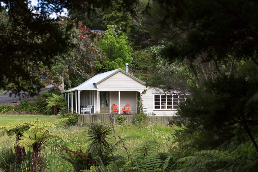 Nestled by the coast in New Zealand native bush